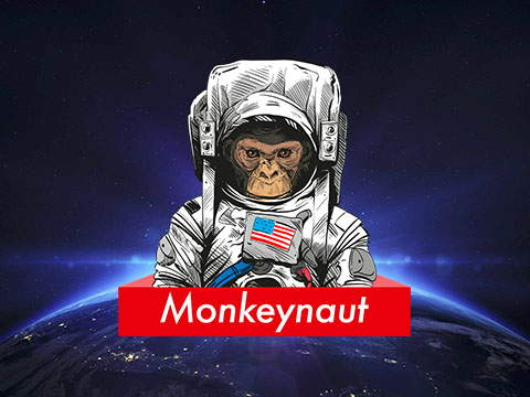 Monkeynaut